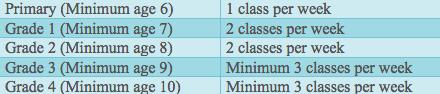 Foundation Syllabus Classes
